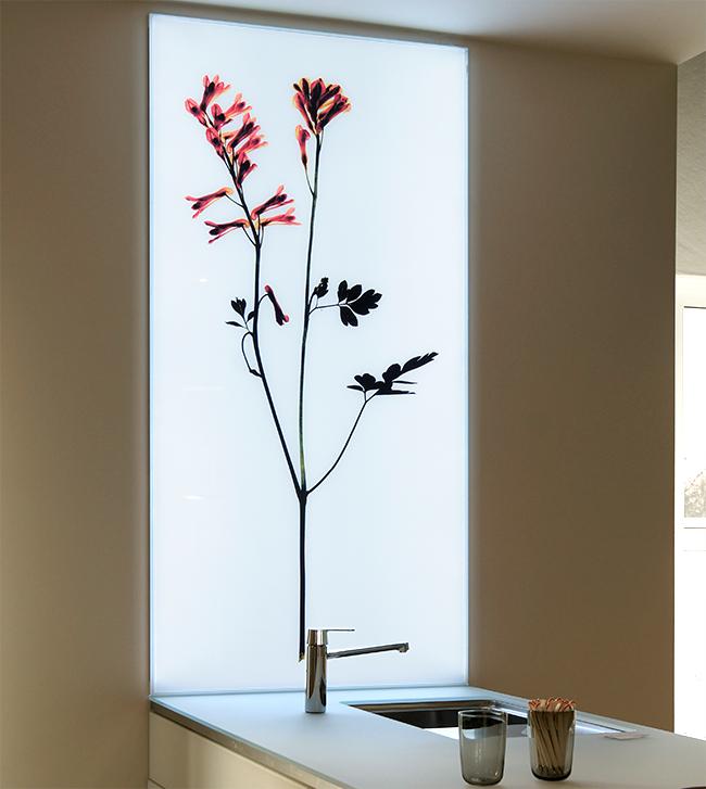 megalab picturelight die technik der ultraflachen leuchtk sten. Black Bedroom Furniture Sets. Home Design Ideas